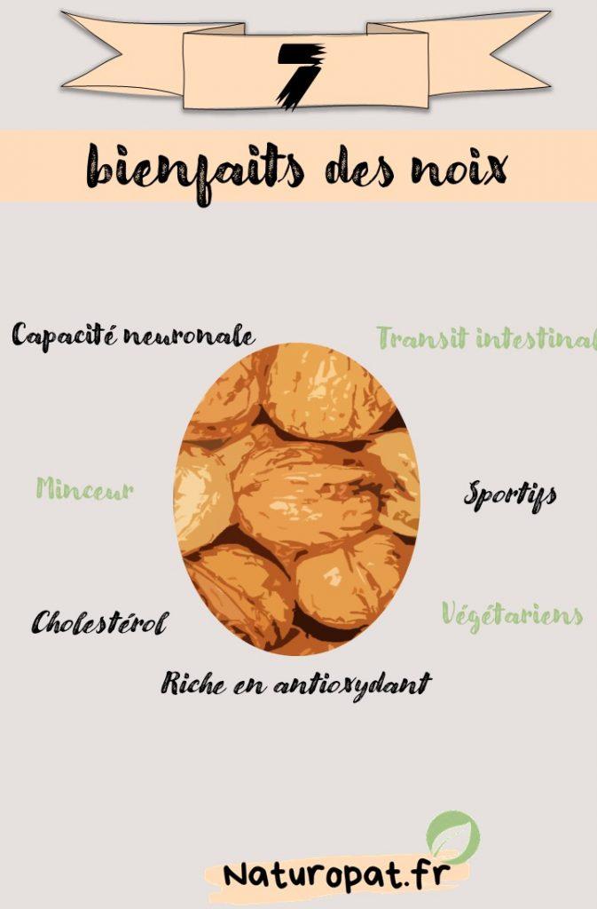 Infographie qui montre les 7 bienfaits des noix : Minceur, sport, cholestérol, minceur, transit...