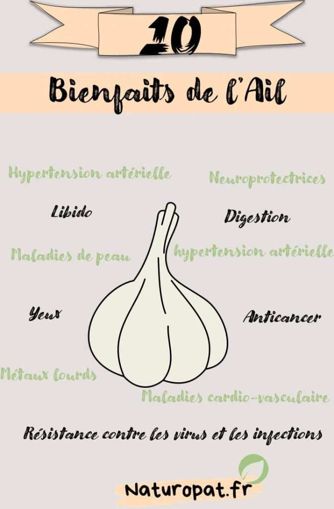 Infographie qui montre les 10 bienfaits de l'ail pour la santé : Anticancer, digestion, libido, yeux, maladies de peau, hypertension artérielle...