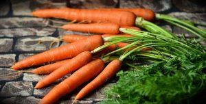 Tout savoir sur la monodiète de carotte