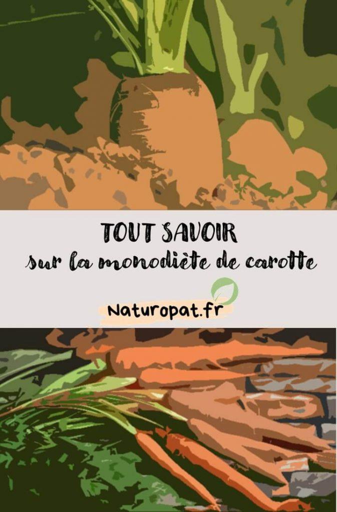 Infographie sur la monodiète de carotte