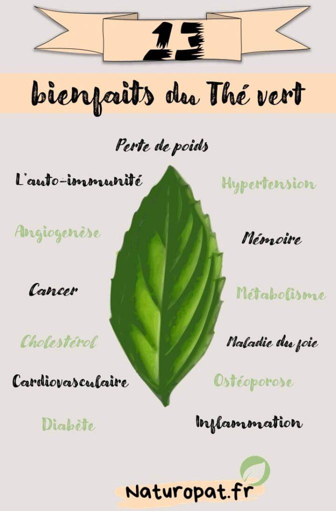Infographie qui montre les bienfaits du thé vert : auto-immunité, mémoire, hypertension, perte de poids, inflammation, diabète, hypertension, maladies cardio vasculaire....