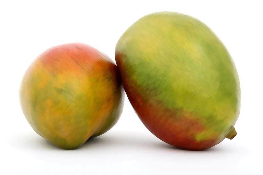 Image de deux mangues