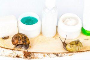 Read more about the article Quels sont les différents produits à base de bave d'escargot ?