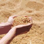 Les bienfaits de la Lécithine de soja